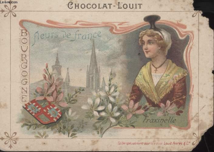 CHROMOLITHOGRAPHIE - BOURGOGNE - FLEURS DE FRANCE - FAXINELLE