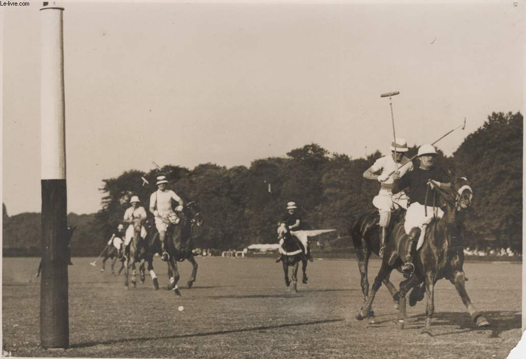 PHOTO ANCIENNE SITUEE - COUPE DE POLO