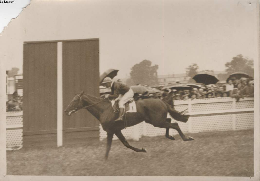 PHOTO ANCIENNE SITUEE - LE PRIX DU JOCKEY CLUB A CHANTILLY
