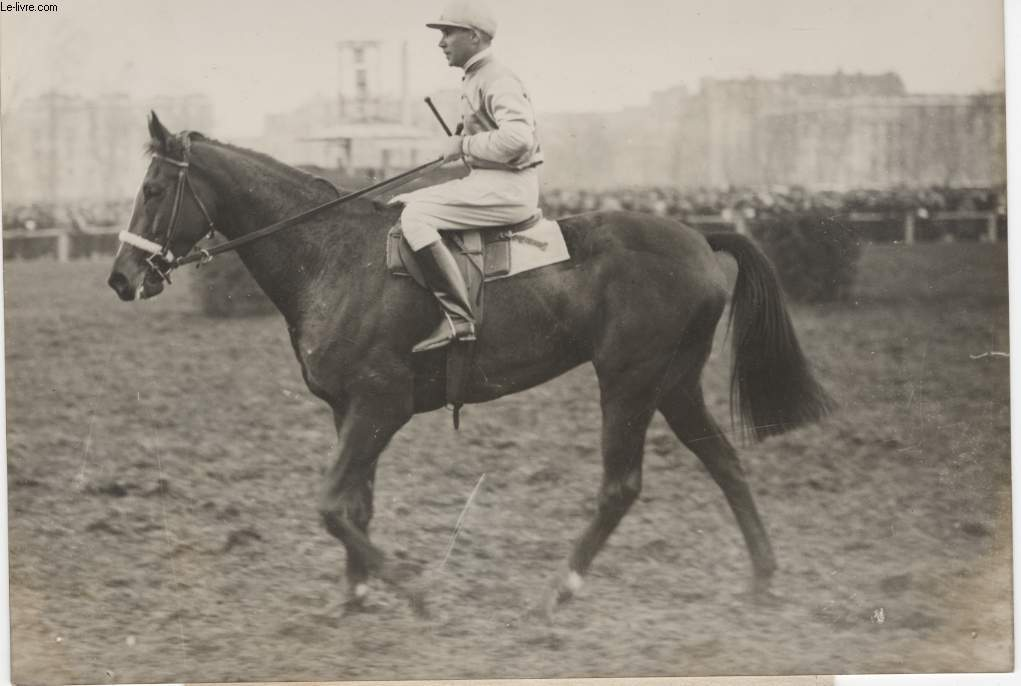 PHOTO ANCIENNE SITUEE - AVANT LE GRAND STEEPLE CHASE DE PARIS