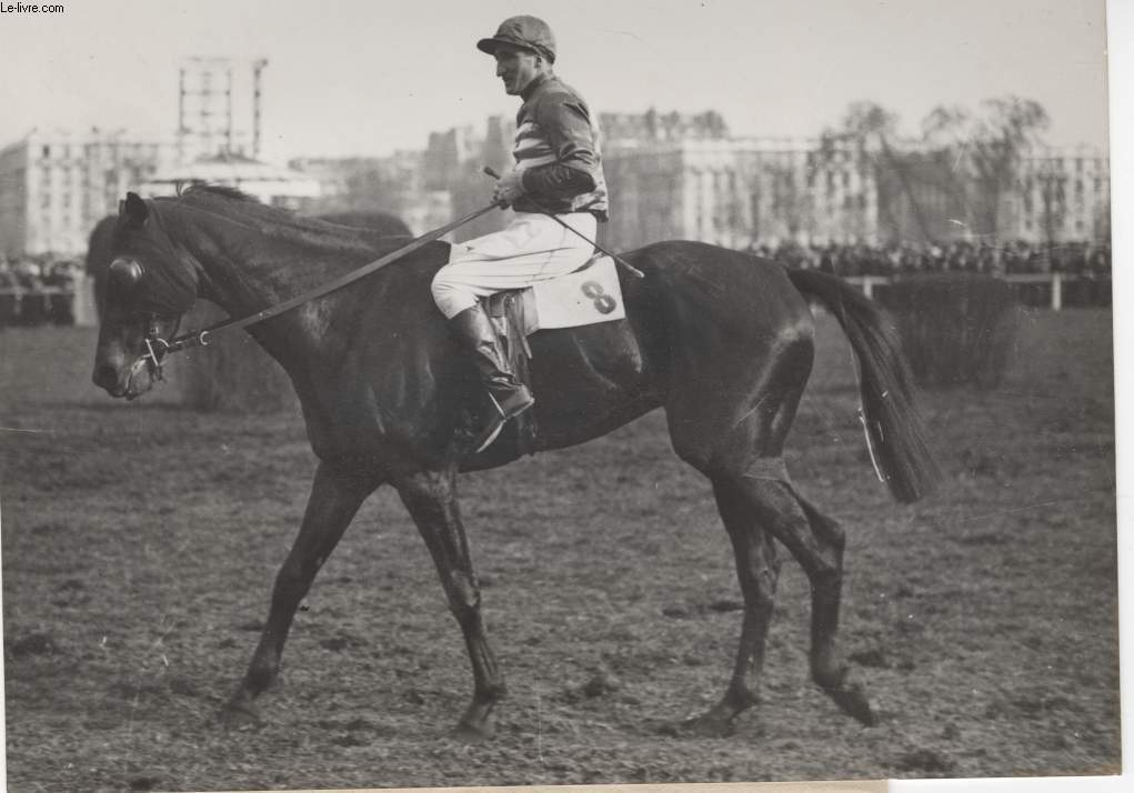 PHOTO ANCIENNE SITUEE -AVANT LE GRAND STEEPLE CHASE DE PARIS