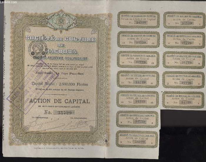 1 ACTION DE CAPITAL - SOCIETE DE CULTURE DE PACOUDA