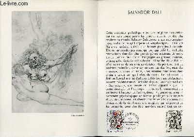 DOCUMENT PHILATELIQUE OFFICIEL N°33-79 - SALVADOR DALI (N°2067 YVERT ET TELLIER)