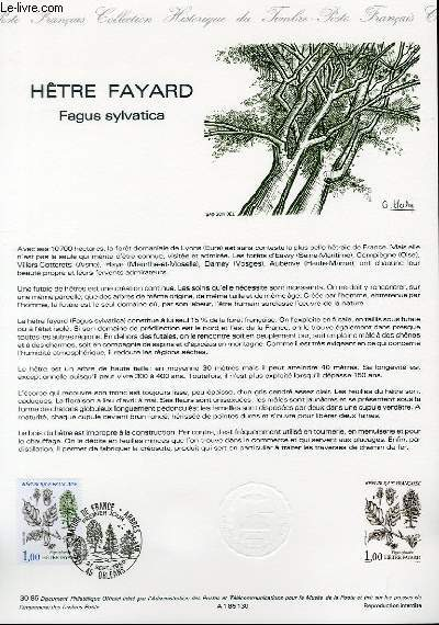 DOCUMENT PHILATELIQUE OFFICIEL N°30-85 - HETRE FAYARD - FAGUS SYLVATICA (N°2384 YVERT ET TELLIER)