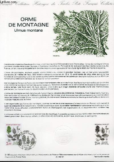 DOCUMENT PHILATELIQUE OFFICIEL N°31-85 - ORME DE MONTAGNE - ULMUS MONTANA (N°2385  YVERT ET TELLIER)