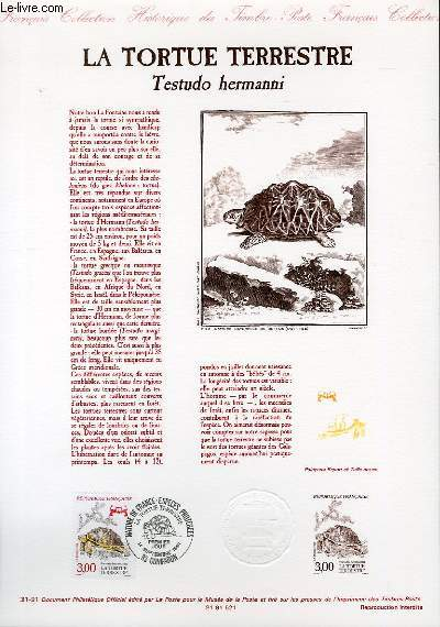 DOCUMENT PHILATELIQUE OFFICIEL N°30-91 - L'OURS DES PYRENEES - URSUS ARCTOS (N°2721 YVERT ET TELLIER)