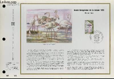 FEUILLET ARTISTIQUE PHILATELIQUE - CEF - N° 128 - ANNEE EUROPEENNE DE LA NATURE 1970 - FLAMANT ROSE