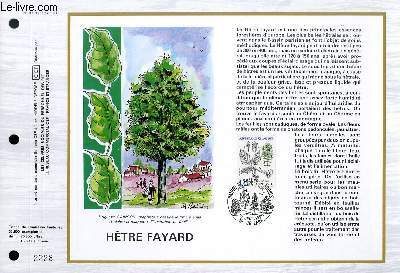 FEUILLET ARTISTIQUE PHILATELIQUE - CEF - N� 785 - HETRE FAYARD