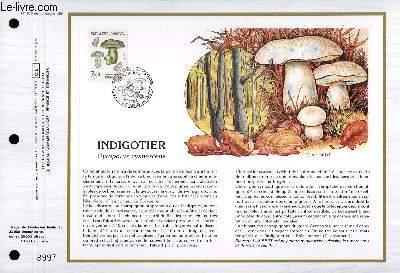 FEUILLET ARTISTIQUE PHILATELIQUE - CEF - N� 875 - INDIGOTIER - GYROPORUS CYANESCENS