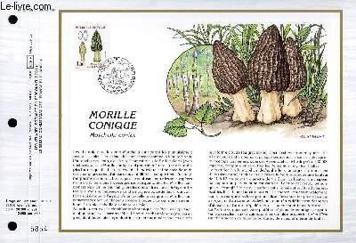 FEUILLET ARTISTIQUE PHILATELIQUE - CEF - N° 877 - MORILLE CONIQUE - MORCHELLA CONICA
