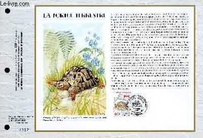 FEUILLET ARTISTIQUE PHILATELIQUE - CEF - N° 1057 - LA TORTUE TERRESTRE