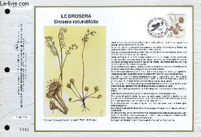 FEUILLET ARTISTIQUE PHILATELIQUE - CEF - N° 1096 - LE DROSERA - DROSERA ROTUNDIFOLIA