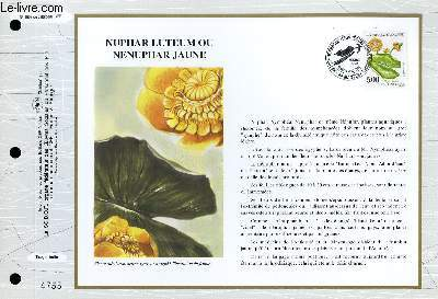FEUILLET ARTISTIQUE PHILATELIQUE - CEF - N° 1098 - NUPHAR LUTEUM OU NENUPHAR JAUNE