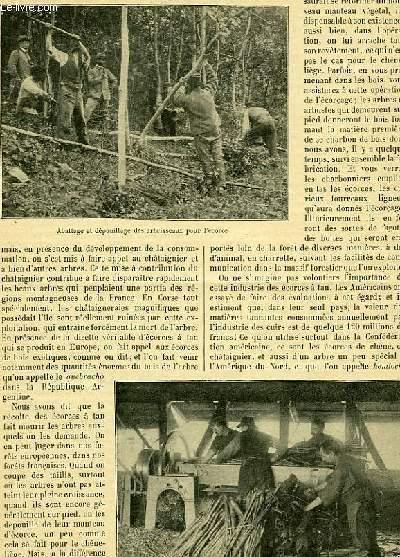 LE JOURNAL DE LA JEUNESSE,TOME 82 - livraison 2138