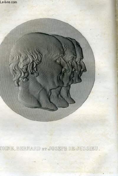 EXTRAIT PORTRAITS ET HISTOIRE DES HOMMES UTILES. ANTOINE, BERNARD ET JOSEPH DE JUSSIEU
