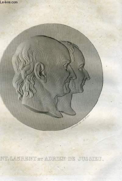 EXTRAIT PORTRAITS ET HISTOIRE DES HOMMES UTILES. ANT. LAURENT ET ADRIEN DE JUSSSIEU