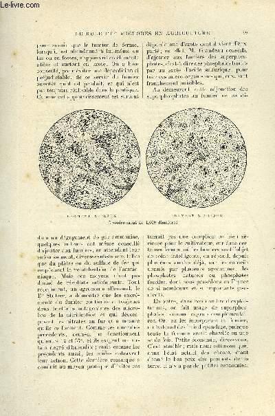 LE MONDE MODERNE TOME 8 - LE ROLE DES MICROBES EN AGRICULTURE