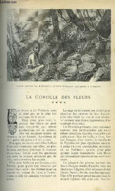 LE MONDE MODERNE TOME 20 - LA COROLLE DES FLEURS