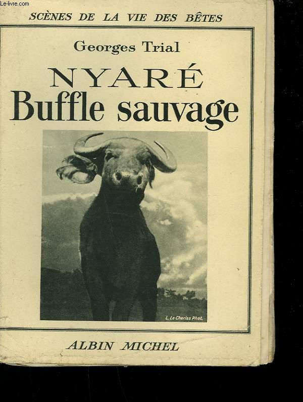 NYARE BUFFLE SAUVAGE.