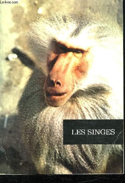 LES SINGES.