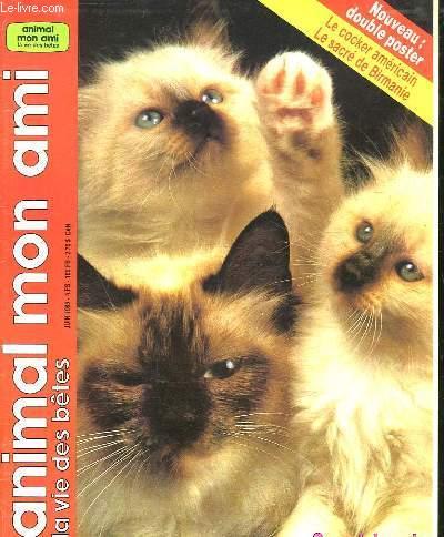 ANIMAL MON AMI N° 95. JUIN 1986. SOMMAIRE: L ETE A QUATRE PATTES. CHIENS CONTRE RATS POUR UN COMBAT A MORT...