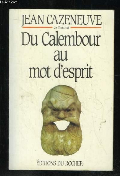 DU CALEMBOUR AU MOT D ESPRIT.