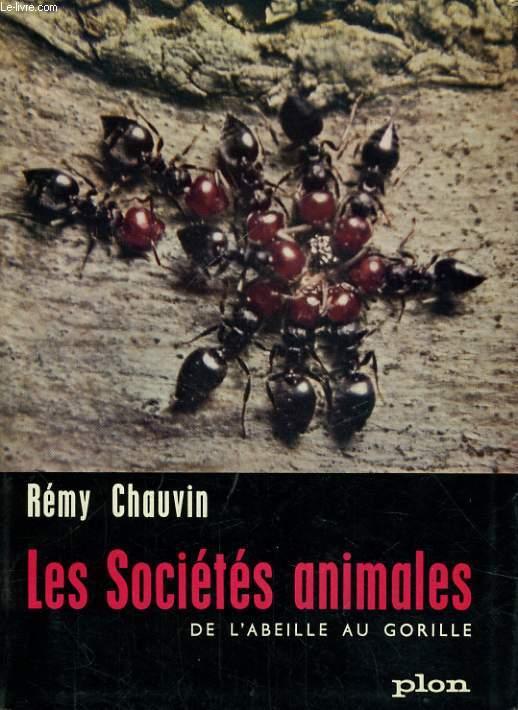 LES SOCIETES ANIMALES, DE L'ABEILLE AU GORILLE