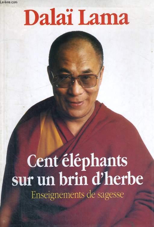 Cent éléphants sur un brin d'herbe - enseignements de sagesse