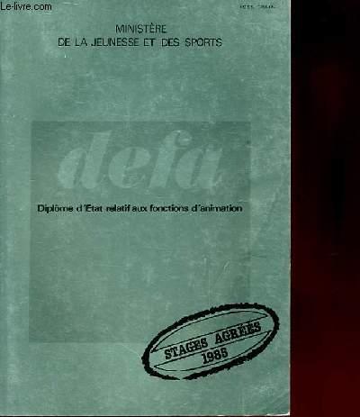 D.E.F.A (diplôme d'Etat relatif aux fonctions d'animation)