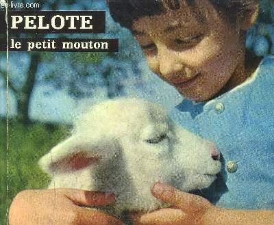 PELOTE LE PETIT MOUTON