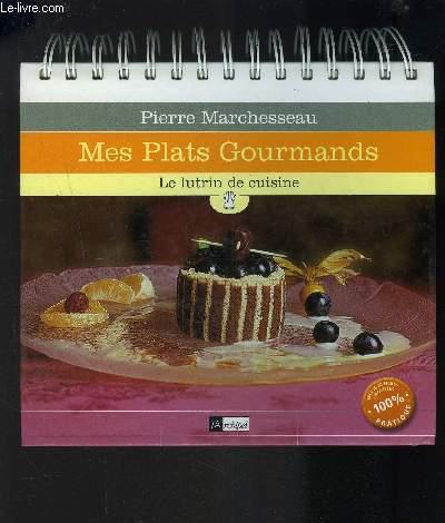 MES PLATS GOURMANDS- LE LUTRIN DE CUISINE/ INCLUS 60 FICHES AMOVIBLES 100% PATRIQUE