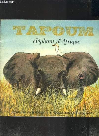 TAPOUM ELEPHANT D AFRIQUE