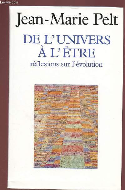 DE L'UNIVERS A L'ETRE : REFLEXIONS SUR L'EVOLUTION