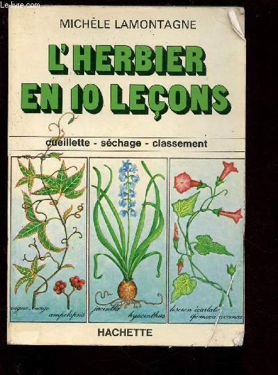 L'HERBIER EN 10 LECONS: CUEILLETTE, SECHAGE, CLASSEMENT