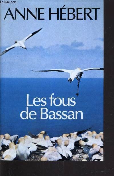 LES FOUS DE BASSAN.