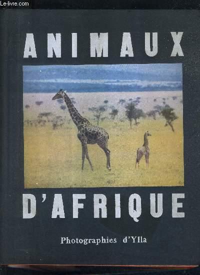 ANIMAUX D'AFRIQUE.