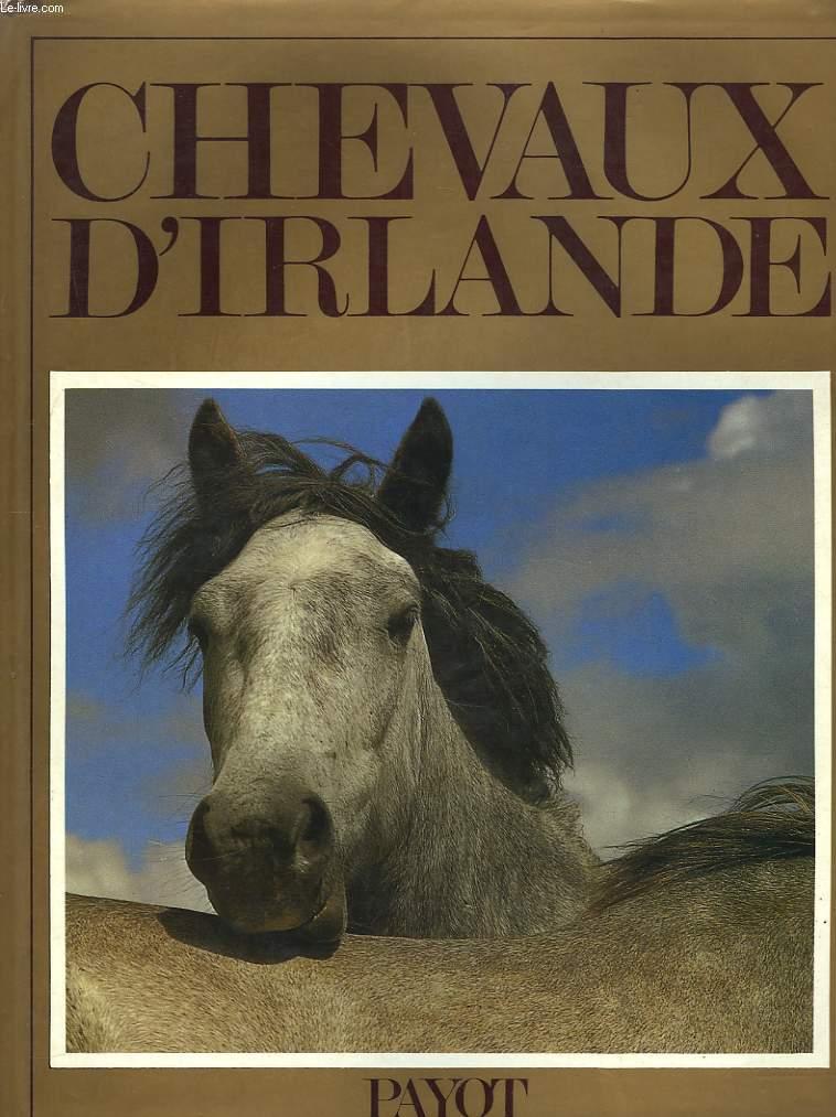 livres occasion chevaux en stock dans nos locaux envoi sous 24h le livre page5. Black Bedroom Furniture Sets. Home Design Ideas