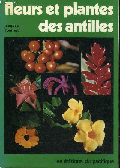 FLEURS ET PLANTES DES ANTILLES.