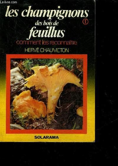 LES CHAMPIGNONS DES BOIS DE FEUILLUS - COMMENT LES RECONNAITRE.