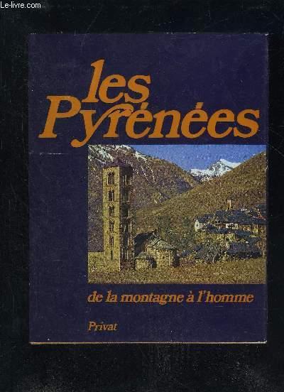 LES PYRENEES DE LA MONTAGNE A L'HOMME.