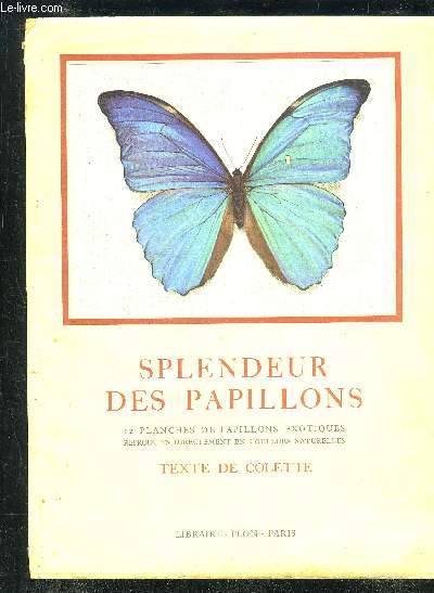 SPLENDEUR DES PAPILLONS - 12 PLANCHES DE PAPILLONS EXOTIQUES REPRODUITS DIRECTEMENT EN COULEURS NATURELLES.
