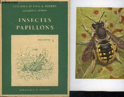 INSECTES PAPILLONS - POCHETTE N°5.