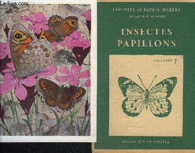 INSECTES PAPILLONS POCHETTE N°7.