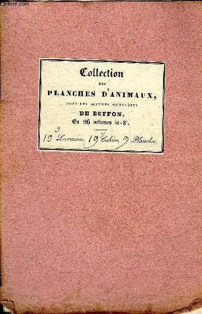 COLLECTION DES PLANCHES D'ANIMAUX POUR LES OEUVRES COMPLETES DE BUFFON - 11 PLANCHES EN NOIR ET BLANC.