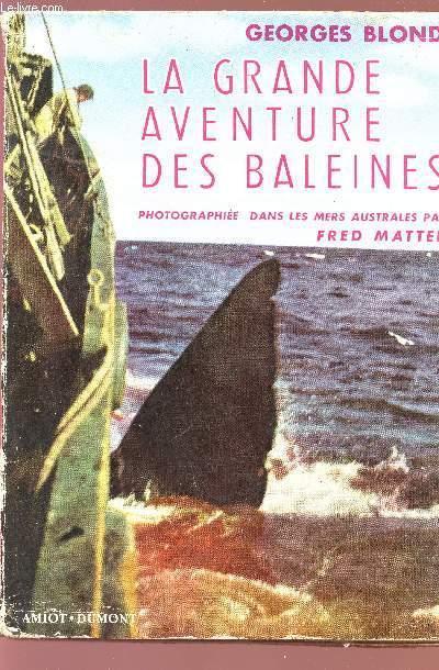 LA GRANDE AVENTURE DES BALEINES - PHOTOGRAPHIEE DANS LES MERS AUSTRALES PAR FRED MATTER.