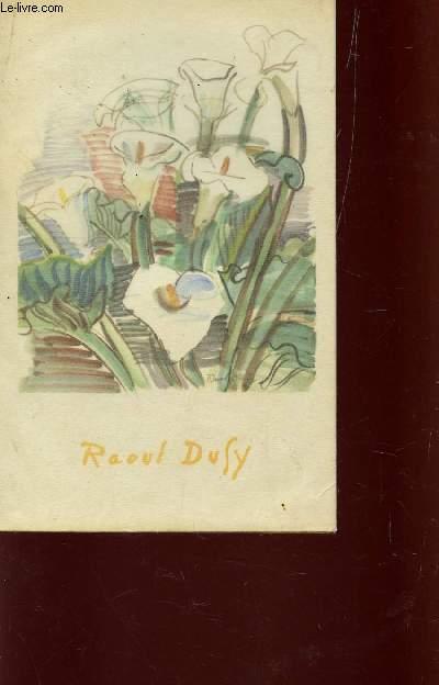 RAOUL DUFY / 13è VOLUME DE LA BIBLIOTHEQUE ALDINE DES ARTS.