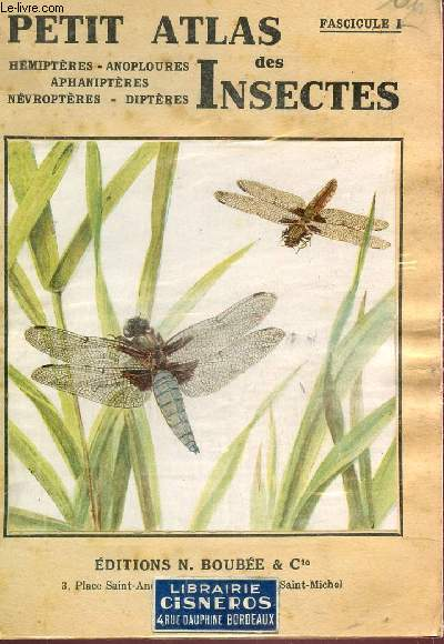PETIT ATLAS DES INSECTES / FASCICULE I : HEMIPTERES, ANOPLOURES, APHANIPTERES; NEVROPTERES, DIPTERES / 3e EDITION.
