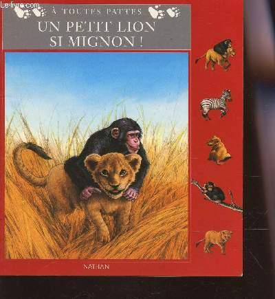 UN PETIT LION SI MIGNON!.