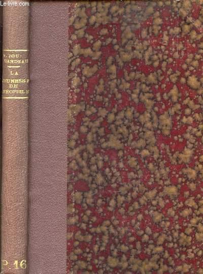 LA JEUNESSE DE THEOPHILE - HISTOIRE IRONIQUE ET MYSTIQUE / 2e EDITION.