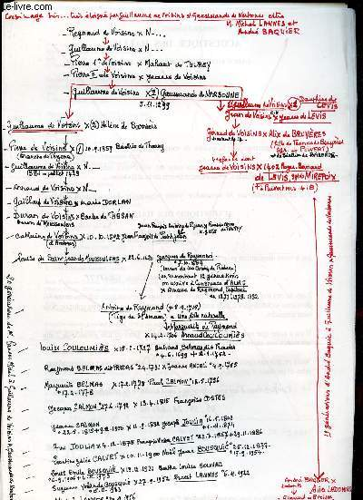 GENEALOGIE DE :  COUSINAGE tres tres tres ... eloigné entre M Michel LANNES et André BAQUIER par guilluamr de VOISINS / (ensemble de documents de recherches).